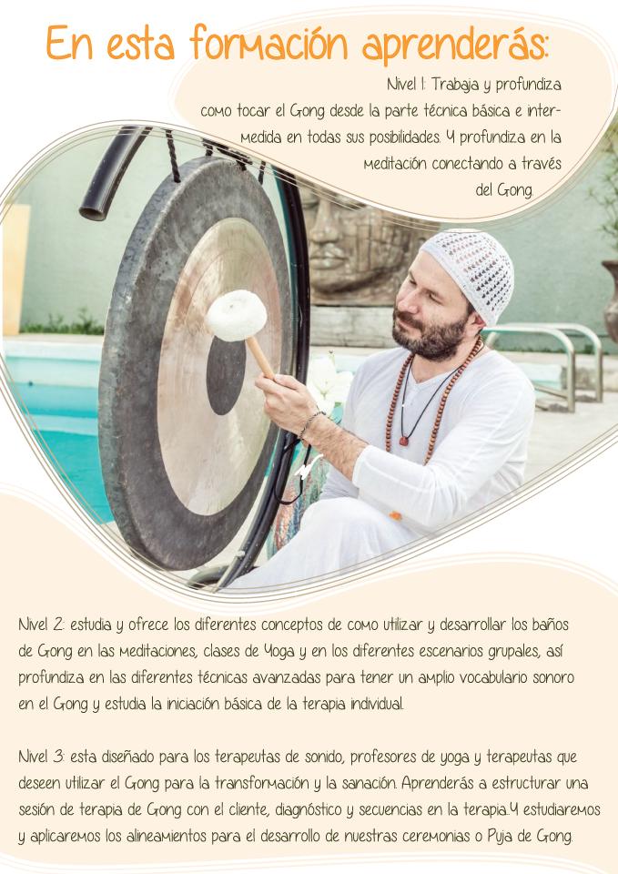 Formación Profesional de Gong con Ramji Singh